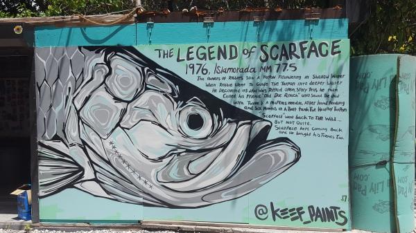Legend of Scarface Robbies Islamorada Florida Keys