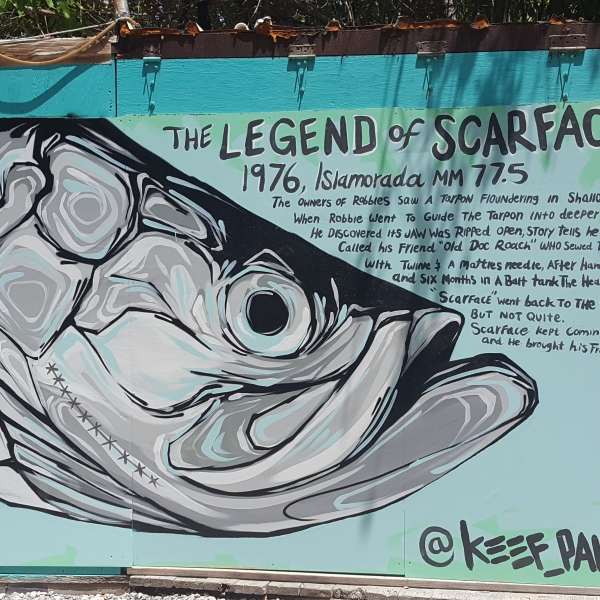 Legend of Scarface Robbies Islamorada Florida Keys