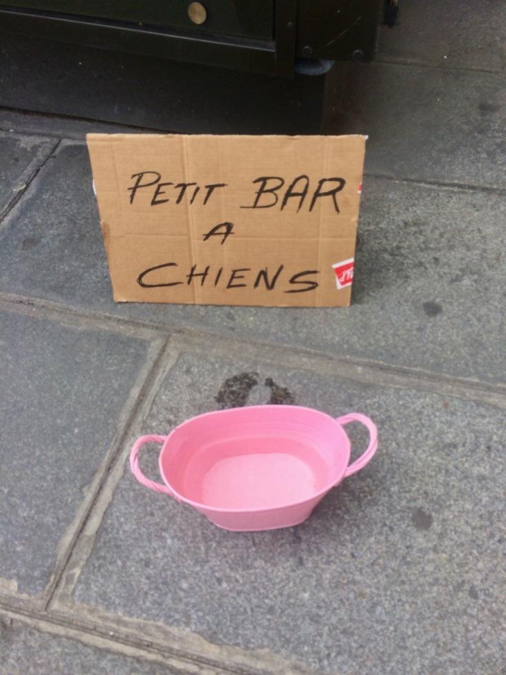 Petit bar à chiens