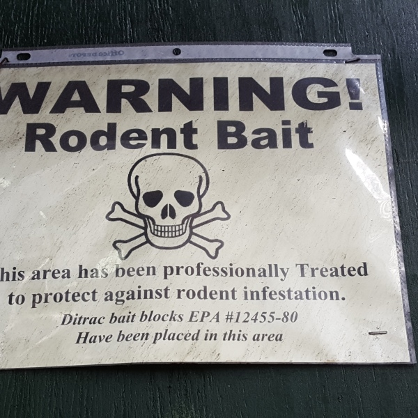 warning rodent bait New York City rats