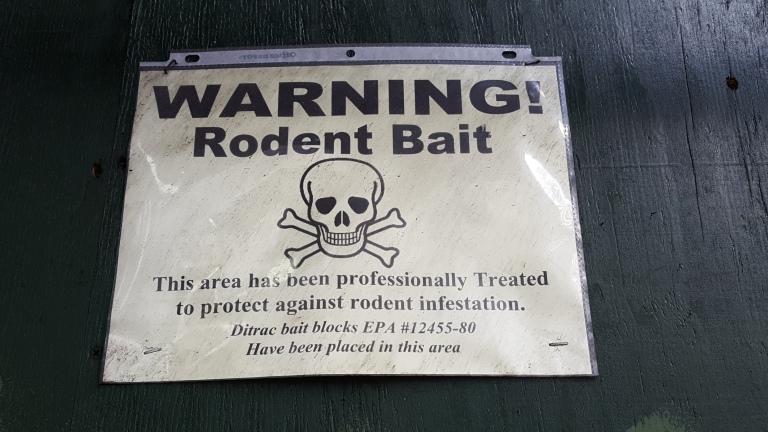 warning rodent bait New York City rats